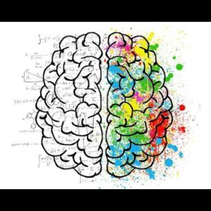 Cerveau neuro hypnose